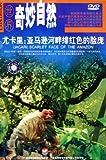 世界奇妙自然:尤卡里亚马逊河畔绯红色的脸庞(DVD)