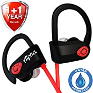 无线耳机 - * 2019 - *佳无线耳机 - 锻炼耳机 - 运动耳机 - 跑步耳机 - 防水耳机 - IPX7 - 带/麦克风降噪 - 男女通用