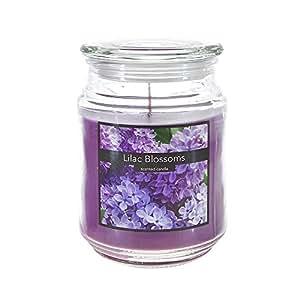 SRG 香薰 520 毫升玻璃罐装蜡烛 Lilac Blossom B00YI6LMRW