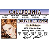 Signs 4 Fun Nnkid Kidman's Driver's 许可证