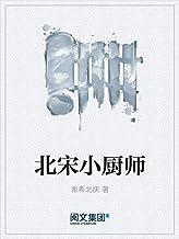 北宋小厨师(阅文白金大神作家作品)