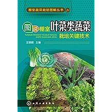 图说棚室叶菜类蔬菜栽培关键技术