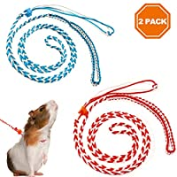 PAWCHIE 2 件小型动物*带牵绳可调节步行绳,适用于锤子、鼠、鼠、松鼠