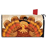 Briarwood Lane 感恩节火鸡磁性邮箱盖圣徒帽标准