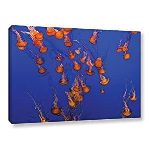 Scott Campbell's Flowing Pacific Sea Nettles 2, Gallery Wrapped canvas 24x36