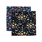 【2片装】午餐十字 标准 加给纳夫金 太阳系行星和恐龙大陆套装(2件套装) N3901212
