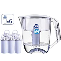 MesoNose美索诺斯Apollo净水壶MN家用滤水壶 1壶6芯