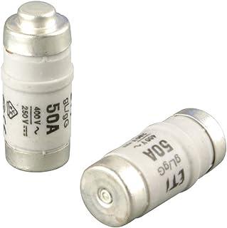 REV Ritter 0515052555 Sicherung D02 50 A E18/Lazy,10 件装