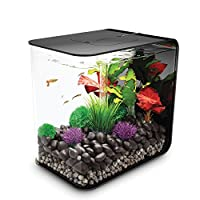 biorb FLOW 水族箱带 LED 灯 黑色 8 gallon/30 liter