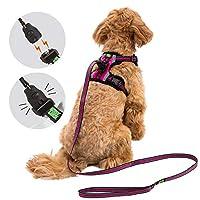 易锁狗狗胸背带和牵引绳套装,适合小型犬品种,磁性扣反光背心,带训练牵绳,可单手轻松连接 紫红色 S