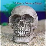 Qptimum 0181 2X 微型树脂骷髅万圣节工艺雕塑水族箱书架沙质心理*装饰品鱼缸装饰爬行动物