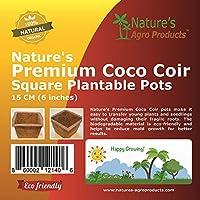 Nature's Premium 可可椰子花盆 Square 6 Inch