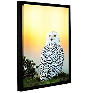 """ArtWall James Thompson's Snowy Owl Sunset Gallery Wrapped Floater-Framed Canvas, 18"""" x 24"""""""