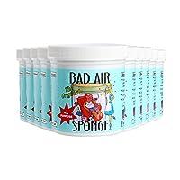 The ORIGINAL Bad Air Sponge吸收异味空气净化剂400g 10灌装 包税包邮