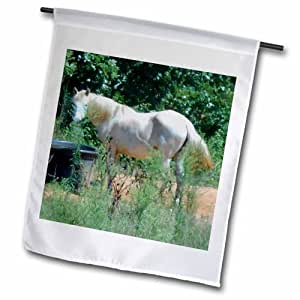 3dRose fl_172270_2 美丽的奶油色马在花园中查找,45.72 x 68.58cm