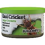 JurassiDiet - EasiCricket:大号,35 克/1.2 盎司