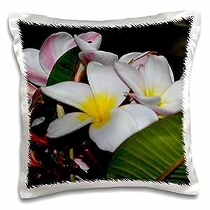 whiteoak 摄影花卉印花–夏威夷花朵–枕套