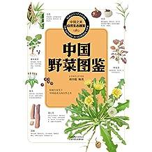 中国野菜图鉴 (中国之美自然生态图鉴)