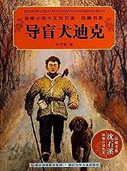 导盲犬迪克 (动物小说大王沈石溪·品藏书系)