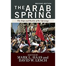 The Arab Spring: The Hope and Reality of the Uprisings (English Edition)