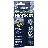 Hobby Protogen infusoire 水族箱,20 毫升 - 3 件装