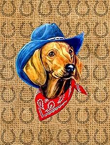 Dachshund Red Dog Country Lucky Horseshoe Flag 多色 大