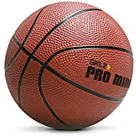 SKLZ Pro 迷你篮球框