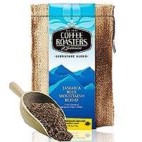 COFFEE ROASTERS 诺斯特 蓝山咖啡粉(精配) 113g(牙买加进口)