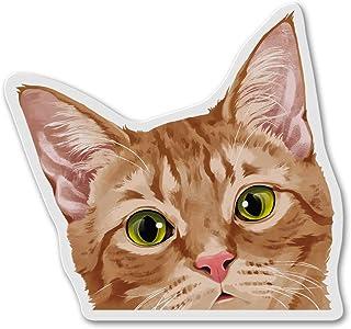WIRESTER 冰箱磁贴装饰,适用于厨房冰箱 Orange Tabby Kitten Cat FRMAGNET-FRMNETA4143