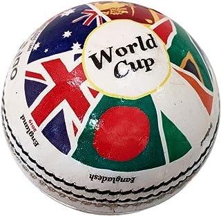 Cricket 世界杯历史板球