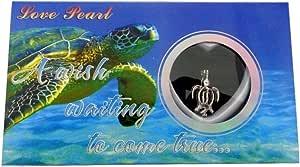 Love Wish 珍珠套件链项链套装吊坠养殖珍珠套装,含不锈钢链子 - PU 海龟 16 Does not apply