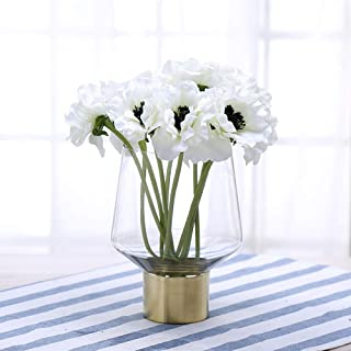 Cyl 家用花瓶圆筒透明玻璃花朵排列花瓶黄铜金带装饰餐桌中心装饰婚礼乔迁派对礼物 金色 7.9'' H x 4.9'' D