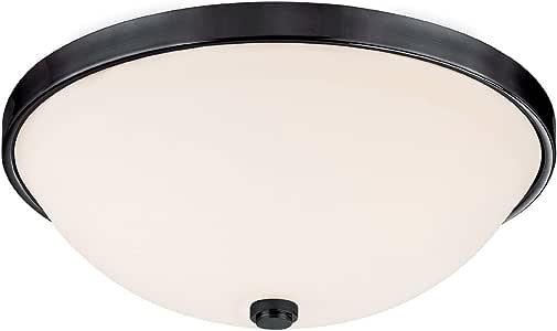 大写照明 2323BC 嵌入式安装带柔软白色玻璃灯罩,抛光镍表面