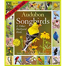 2019 Audubon Songbirds and Other Backyard Birds Picture-A-Day Wall Calendar