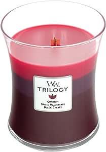 WoodWick 三合一高香型蜡烛,经典沙漏罐,中号 4 英寸,9.7 盎司 Sun Ripened Berries 中 26582-QAR