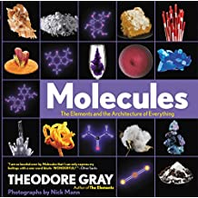 Molecules: The Elements and the Architecture of Everything (English Edition)