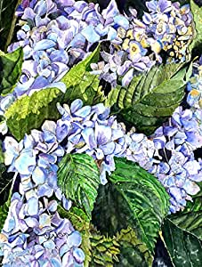 Caroline's Treasures 8730-FLAG-PARENT Hydrangea 旗帜,多色 大 多种颜色 8730CHF