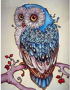 全钻石刺绣动物猫头鹰 5D 钻石绘画十字绣 3D 钻石马赛克针工艺圣诞礼物 34x54CM 43235-87646