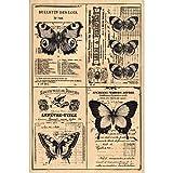 Florilèges 米色蝴蝶图案 fha115030 印章剪贴簿 页面 15 x 10 x 2.5 cm