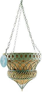 Austram | 安妮女王遮阳伞花盆 * 35.56 厘米金属悬挂花盆花盆 | 可可椰纤维衬里 | 完美的装饰家居和园艺礼品 | 室内户外草坪(2,*)