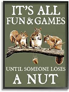 Stupell Industries Loses A Nut 趣味松鼠动物文字,RetroRocket Wall Art 设计,27.94 x 35.56 厘米,黑色加框