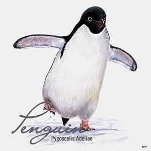 无树问候语 62717 Adelie Penguin 主题野生动物艺术高级冰箱磁铁,8.89 cm