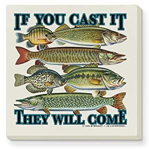 CounterArt If You Cast It Absorbent Coasters, Set of 4