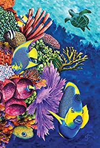 Toland Home Garden Angelfish and Coral Friends Garden Flag 五彩 Large-House-28x40