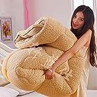Xanlenss 轩蓝仕 超柔蓬松羊羔绒秋冬被子 150*200cm 5斤重 99元包邮(需用码)