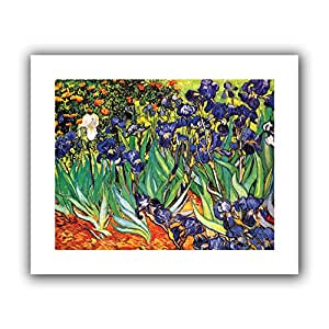 "ArtWall ""Irises in The Garden"" Flat Unwrapped Canvas Art by Vincent Van Gogh, 28 by 36-Inch, Holds 24 by 32-Inch Image"