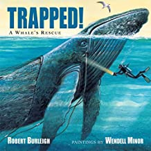 Trapped! A Whale's Rescue (English Edition)