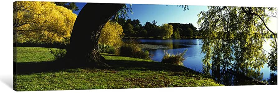 iCanvasART PIM3179-1PC6 Willow Tree by a Lake, Green Lake, Seattle, Washington State, USA Canvas Print by Panoramic Images, 1.5 by 48 by 16-Inch
