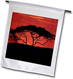 3dRose fl_60469_1 坦桑尼亚塞伦盖蒂国家公园的亚树,非洲花园旗,30.48 x 45.72 厘米