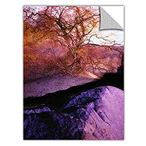 ArtWall Appealz Dean Uhlinger 'A Desert Wind' Removable Graphic Wall Art, 24 by 32-Inch